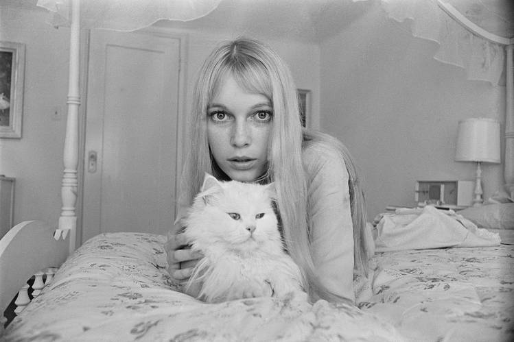 PURR RELATIONS The actress Mia Farrow sitting pretty with a kitty in 1964.