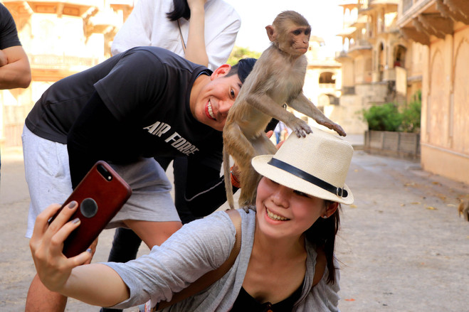 Tourists take a selfie at a temple in India. Incidents involving animals are a common cause of injury on the road.
