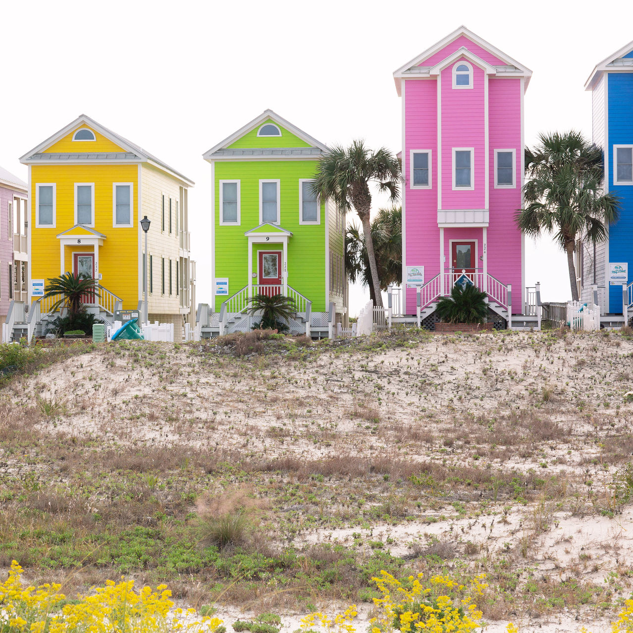 Seaside homes on the barrier Island Saint George, 4 miles offshore from Apalachicola.