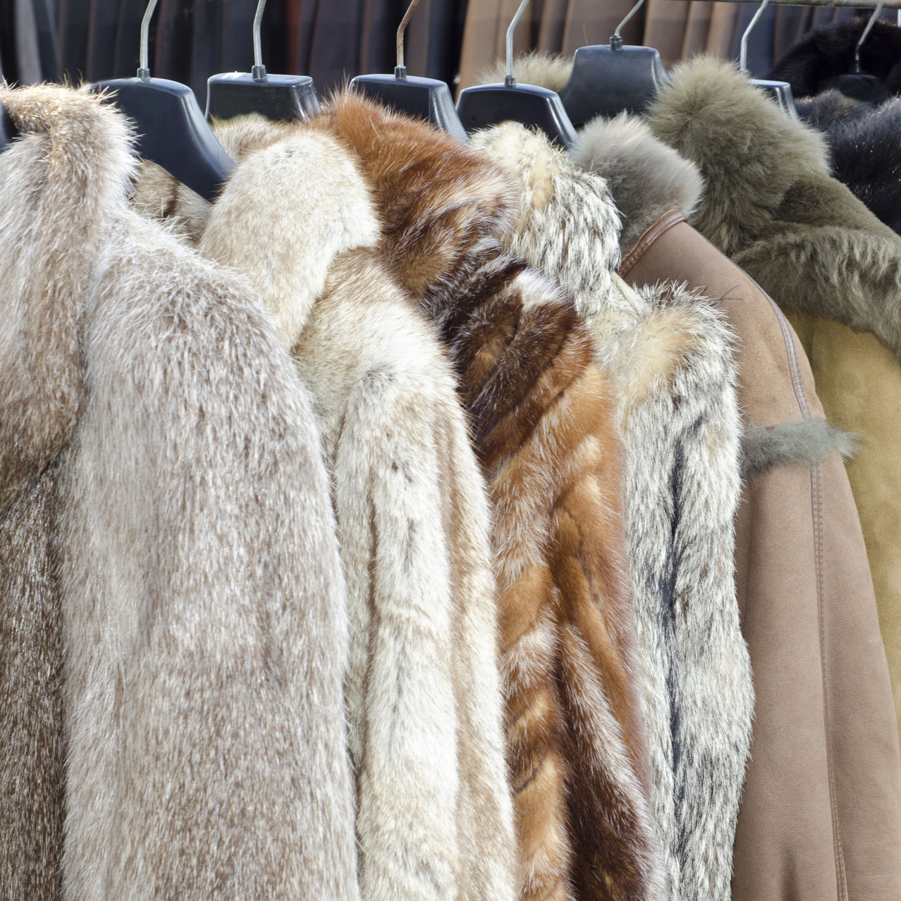 Coats made from animal fur.