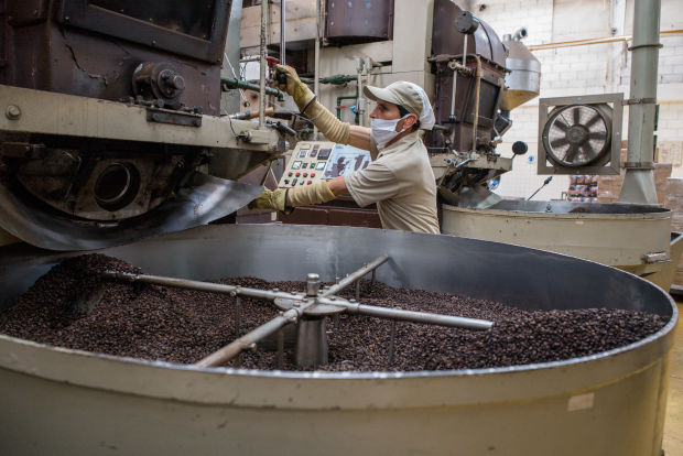 A worker supervises arabica coffee roasting in Sevilla, Colombia.