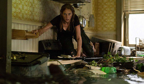 Crawl Kaya Scodelario kneels on the stove, looking for somewhere to jump
