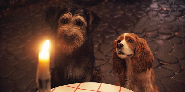 Lady and the Tramp live-action Bella Notte song scene
