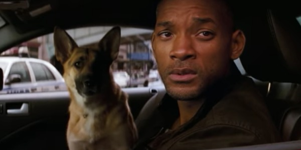 Will Smith and his sole canine companion, Sam, in I Am Legend