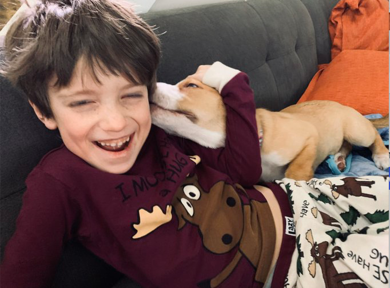 Young boy laughing with dog on couch.