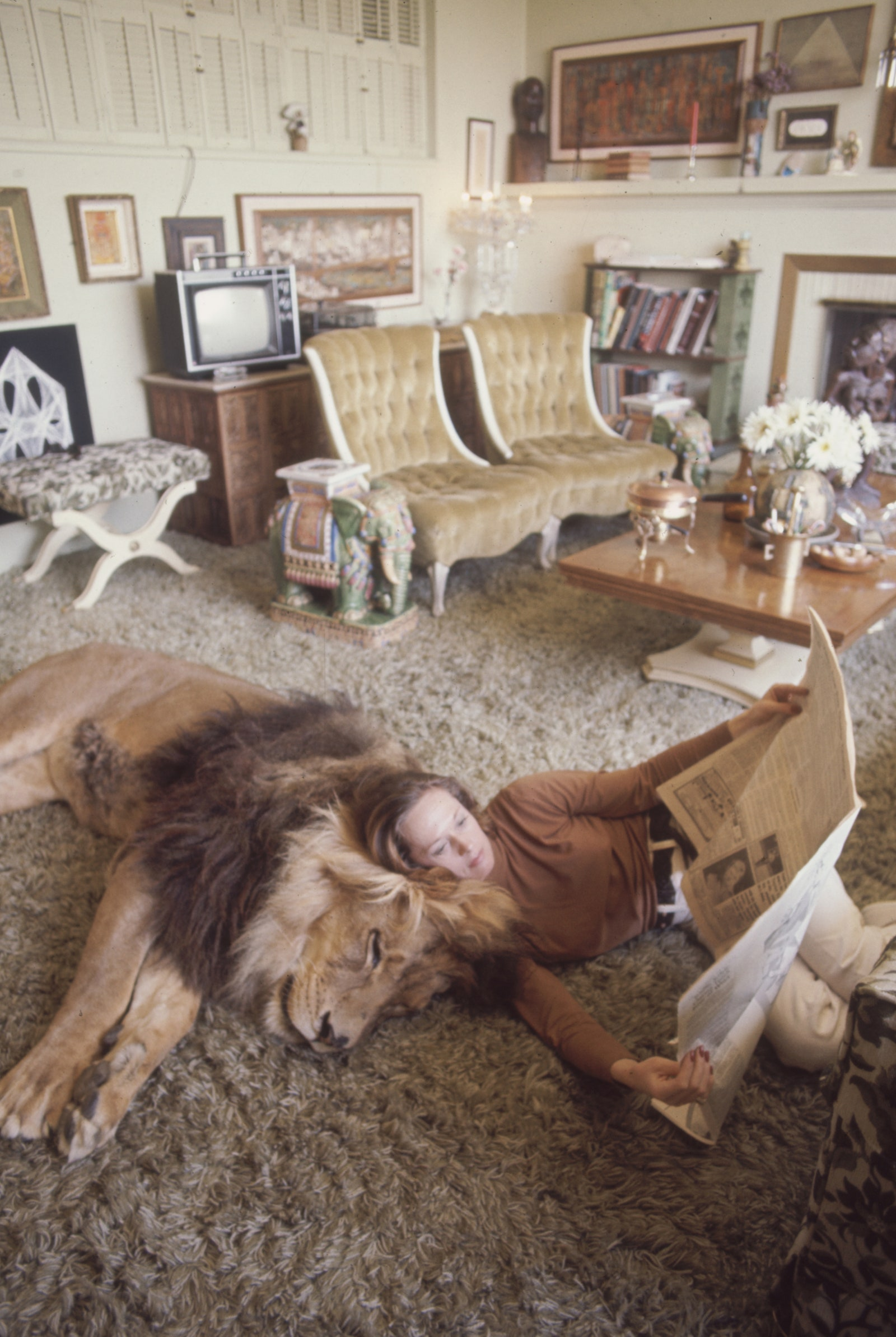 Tippi Hedren and her pet lion Neil at her home in Sherman Oaks in 1971.