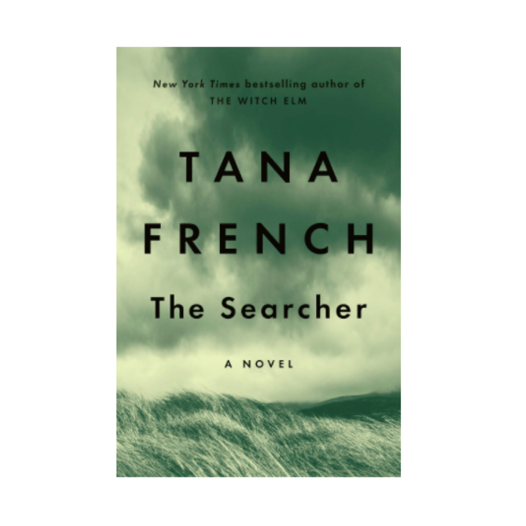 the searcher novel by tana french
